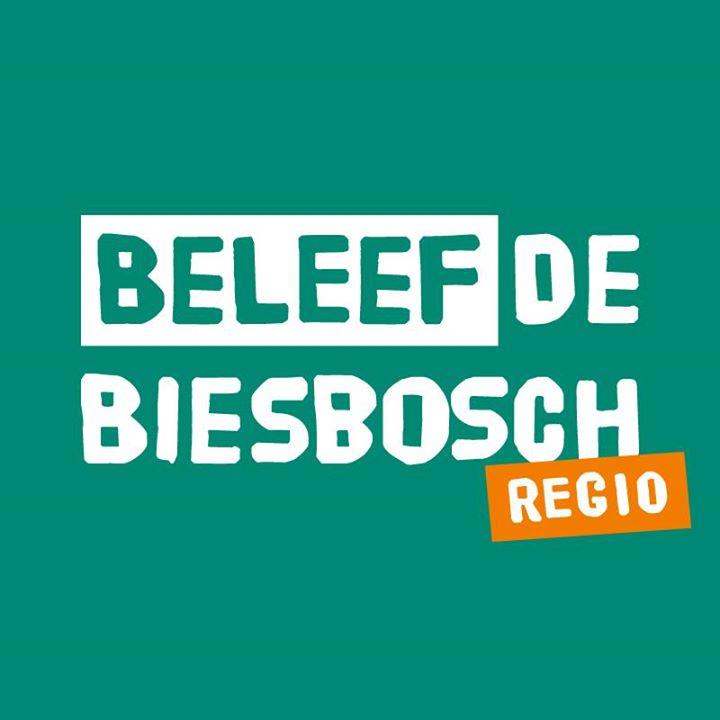 Beleef de Biesbosch